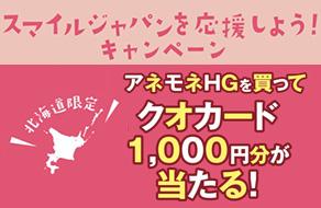 【北海道地区】アネモネHGを買ってスマイルジャパンを応援しよう!キャンペーン