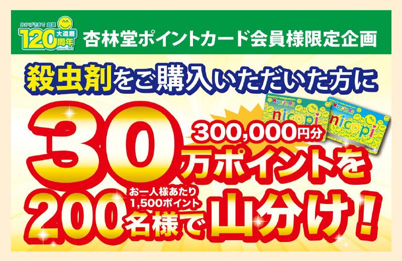 殺虫剤ご購入で30万ポイント山分けキャンペーン!!