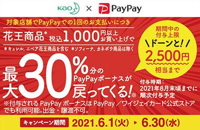 花王×PayPay!最大30%分のPayPayボーナスが戻ってくるキャンペーン!