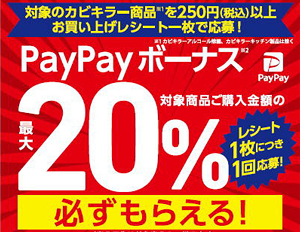 カビキラー商品購入で最大20%のPayPayボーナスが必ずもらえるキャンペーン!